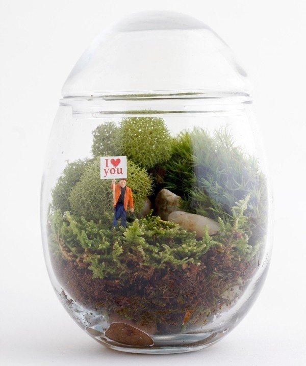 Twig terrarium piccoli giardini in vetro dentro casa rose in the wind - Giardini in casa ...