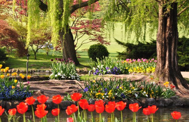 I parchi pi belli d 39 italia sigurt e villa medicea di for Foto giardini fioriti