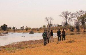 passeggiata-okavango