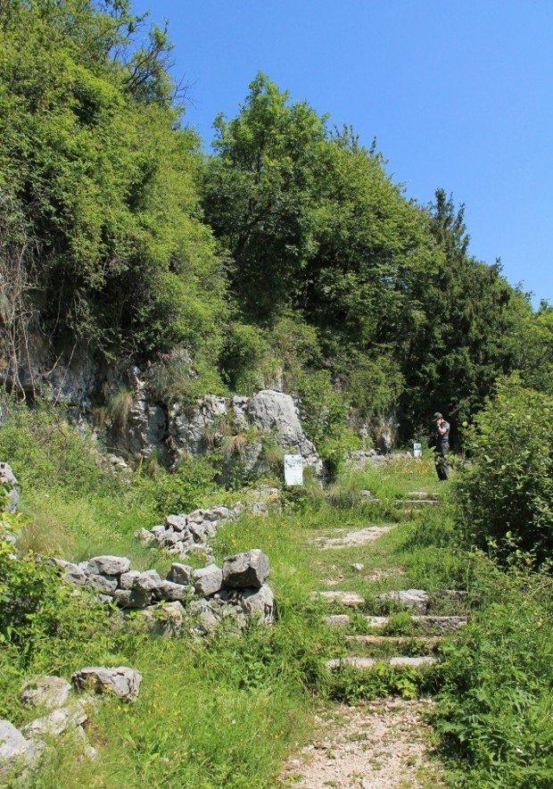 col-campeggia-foto (16)