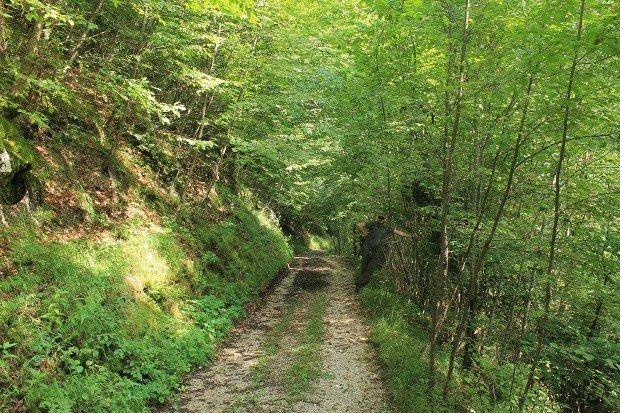 passeggiata-val-canzoi (3)