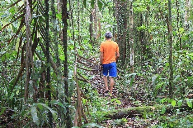 foresta-amazzonica-4