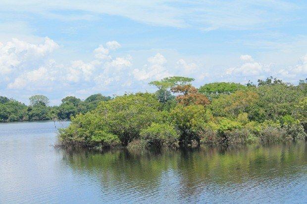 viaggio-in-amazzonia-2