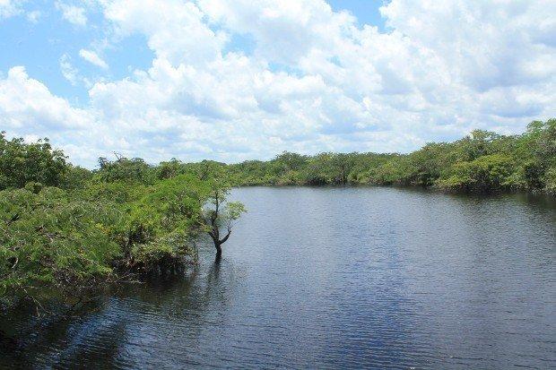viaggio-in-amazzonia-8