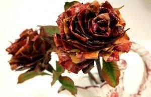 rose_di_foglie